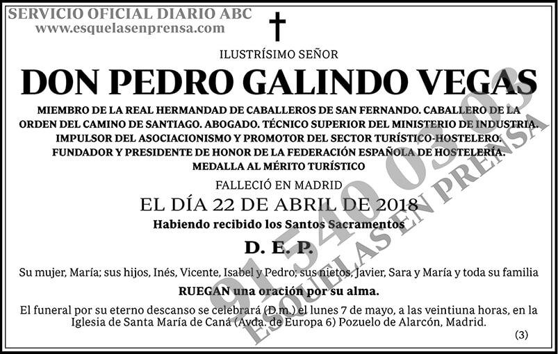 Pedro Galindo Vegas